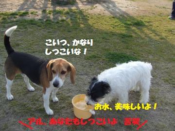 052_convert_20120412234255.jpg