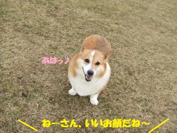 053_convert_20120228232443.jpg