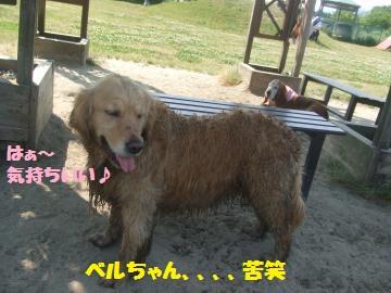 053_convert_20120528222353.jpg