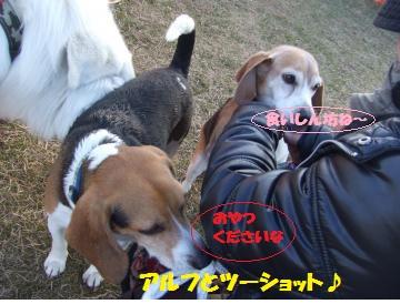 054_convert_20120213225522.jpg