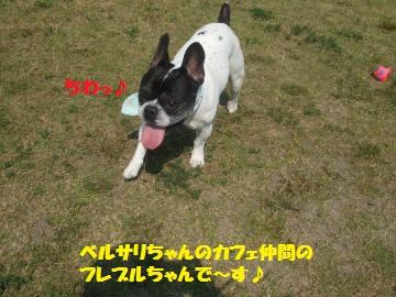 056_convert_20120528222552.jpg