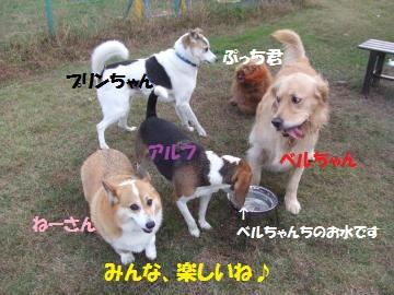 057_convert_20111117235407.jpg