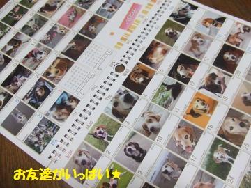 058_convert_20111219001710.jpg