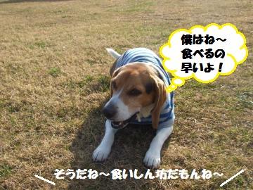 060_convert_20111230234431.jpg