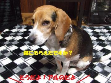 060_convert_20120214221246.jpg