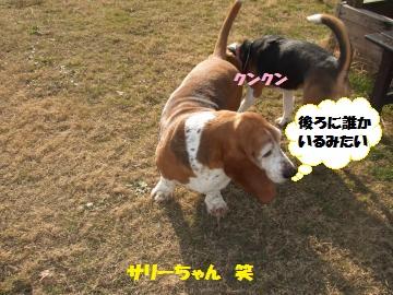 065_convert_20120116222538.jpg