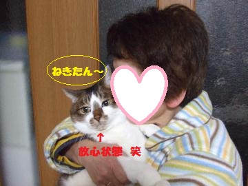 066_convert_20120126225640.jpg