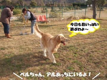 068_convert_20120116222636.jpg