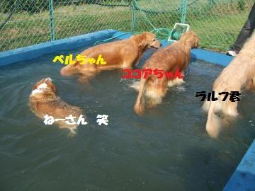 077_convert_20120528223129.jpg