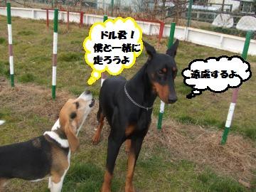 078_convert_20120116221642.jpg