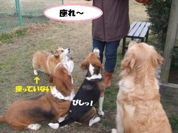 086_convert_20120116222035.jpg