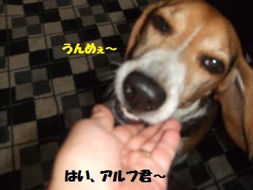 088_convert_20120614231854.jpg