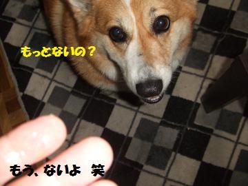 089_convert_20120614231950.jpg