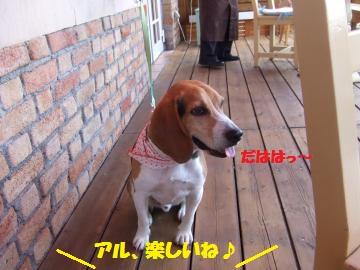 091_convert_20120509235235.jpg