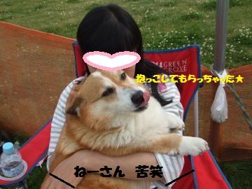 092_convert_20120501232932.jpg