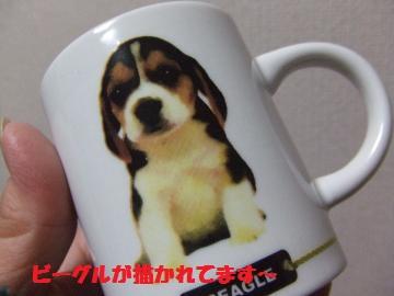 098_convert_20120113235751.jpg