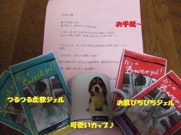 103_convert_20120113235840.jpg
