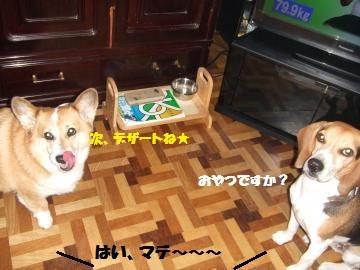 106_convert_20120104230249.jpg
