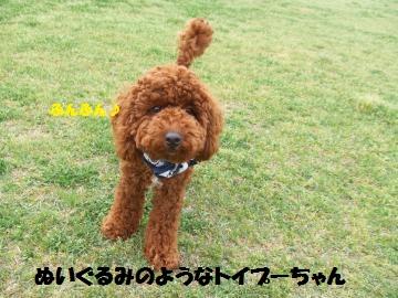106_convert_20120501233114.jpg