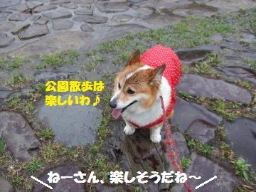 114_convert_20120427013204.jpg