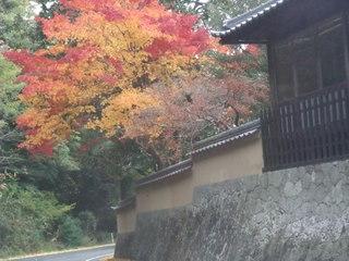 2010_1118しまなみ海道0012