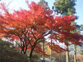 2010_1121しまなみ海道0002