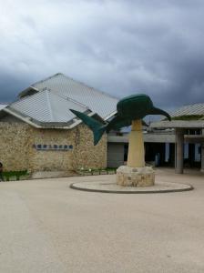 美ら海水族館01