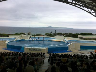 美ら海水族館09