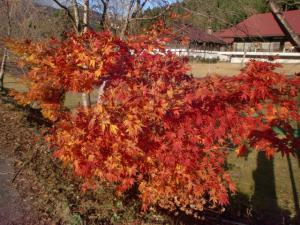 板取川温泉 002