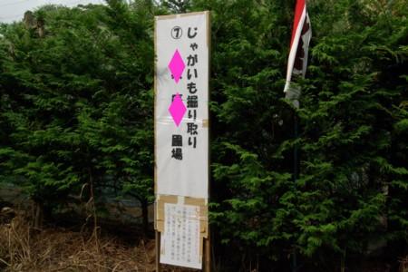 2010061315.jpg