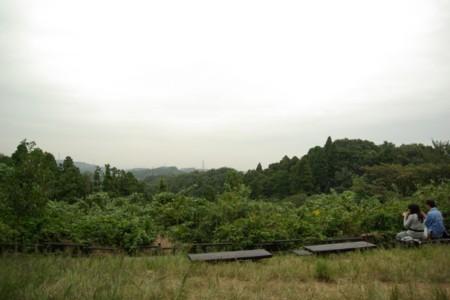 2010102413.jpg