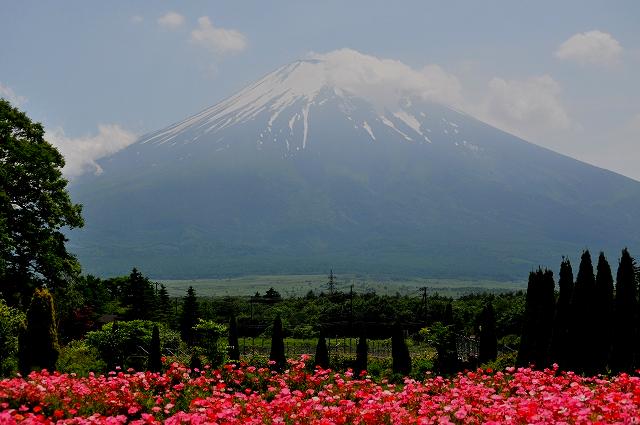 山中湖『花の都公園』
