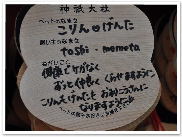 わんこ連れ伊豆旅行(前編)
