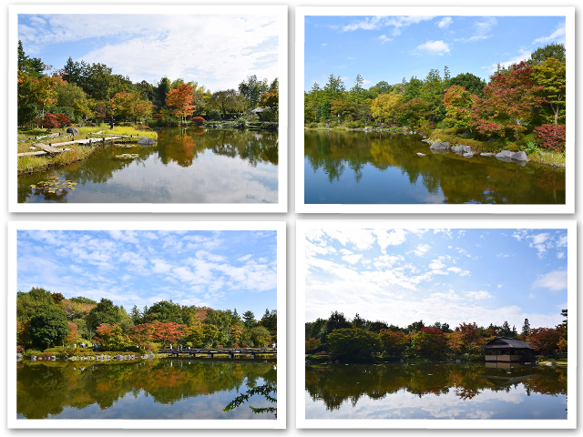 お散歩☆昭和記念公園