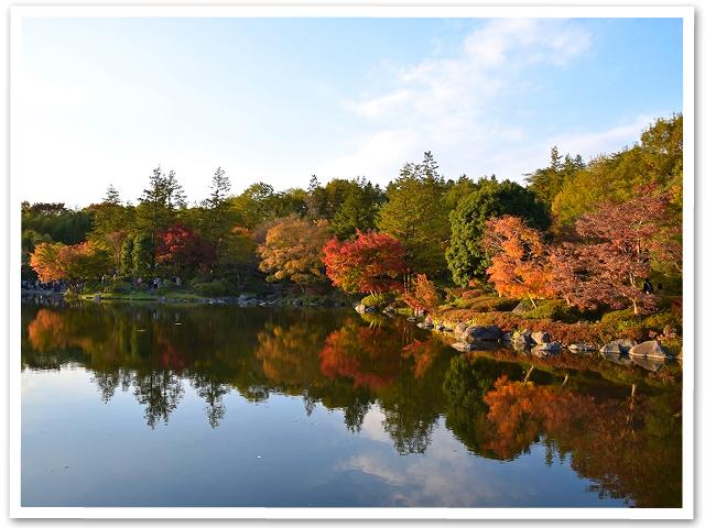 紅葉☆昭和記念公園