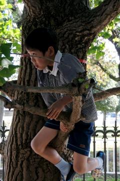 園庭で木登り