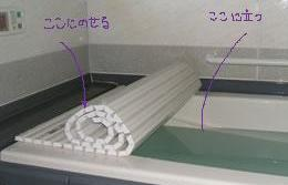 bath_cover_pic10_20110203135119.jpg