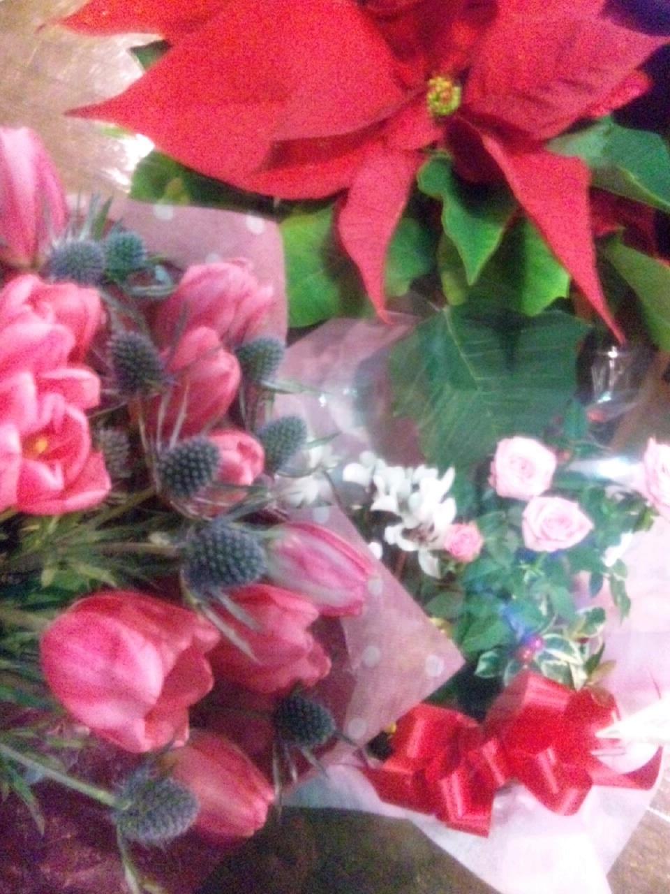 hanaお花たち