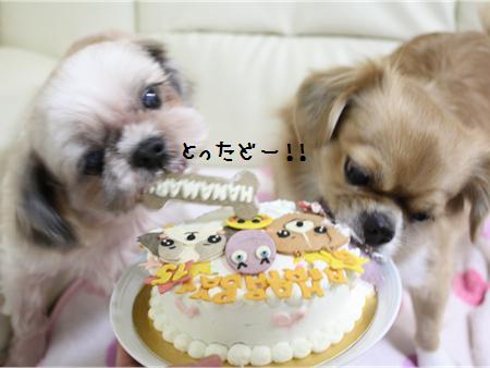 誕生日会8