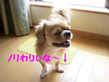 ↓.JPG