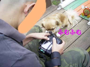 撮影風景6.JPG
