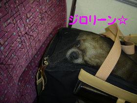 銀座へGO3.jpg