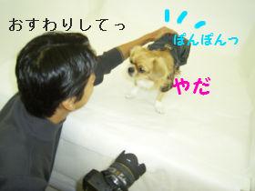 銀座へGo4.jpg