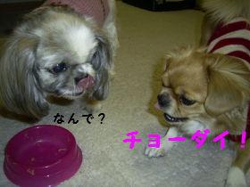 ごはんたいむ7.jpg