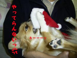 プレゼント8.jpg