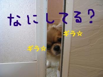 小姑編集.JPG