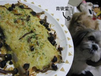 夕飯鮭1.jpg