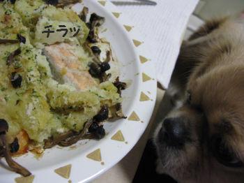 夕飯鮭2.jpg