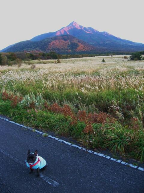 yuhi5_20101011080654.jpg