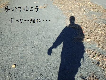 PB190069walk.jpg